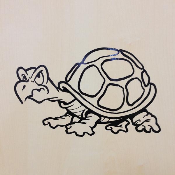 krankenwagen für schildkröten
